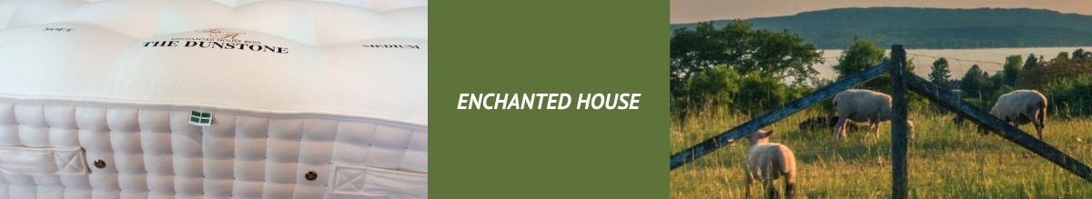Enchanted House Banner